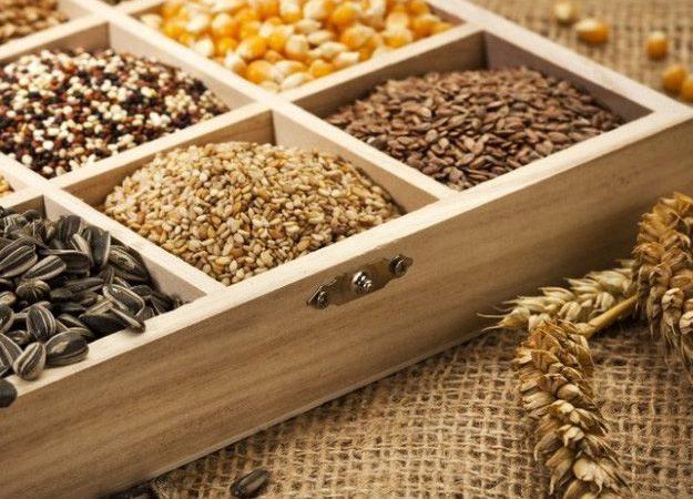 В Херсоне строится завод по производству семян