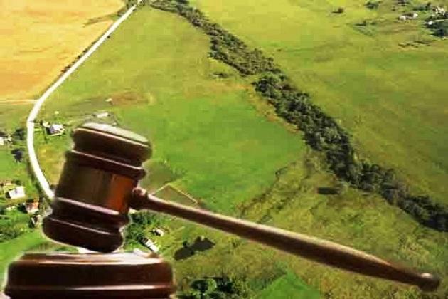 У червні землевпорядники планують реалізувати з торгів права оренди на 432,5 гектари землі
