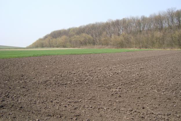 Від херсонської землі наповнюється бюджет громади