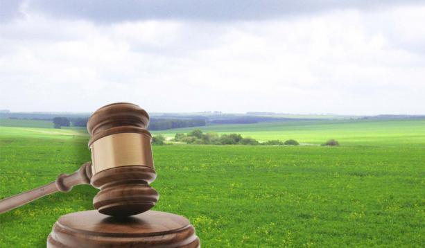 У травні на Херсонщині аграрії придбали з аукціонів права оренди на 708 гектарів землі