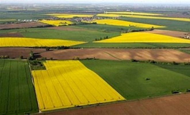 Черговий факт самовільного використання землі виявлений у Каховському районі