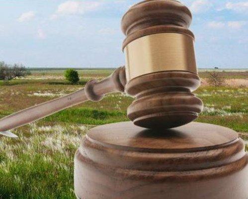 На земельних торгах у Каховському районі аграрій придбав право оренди земельної ділянки за майже півмільйона гривень