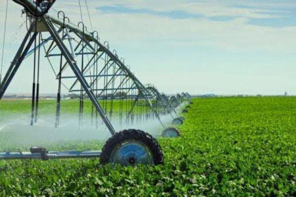 Собівартість продукції, вирощеної аграріями на зрошенні, має бути меншою – державні аудитори
