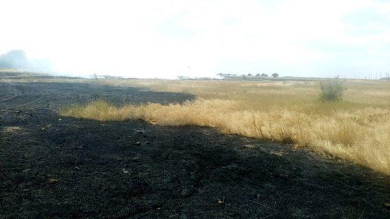 12 липня в області зареєстровано 23 пожежі і загорянь сухої трави