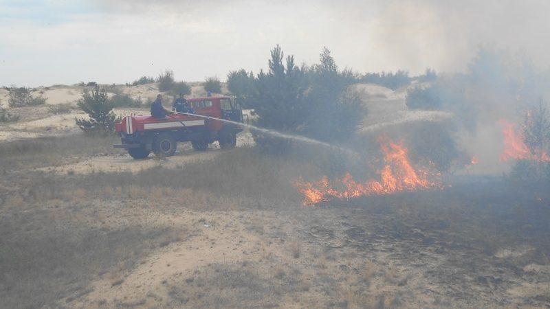 В Олешківському районі триває ліквідація лісової низової пожежі на площі 4,6 га