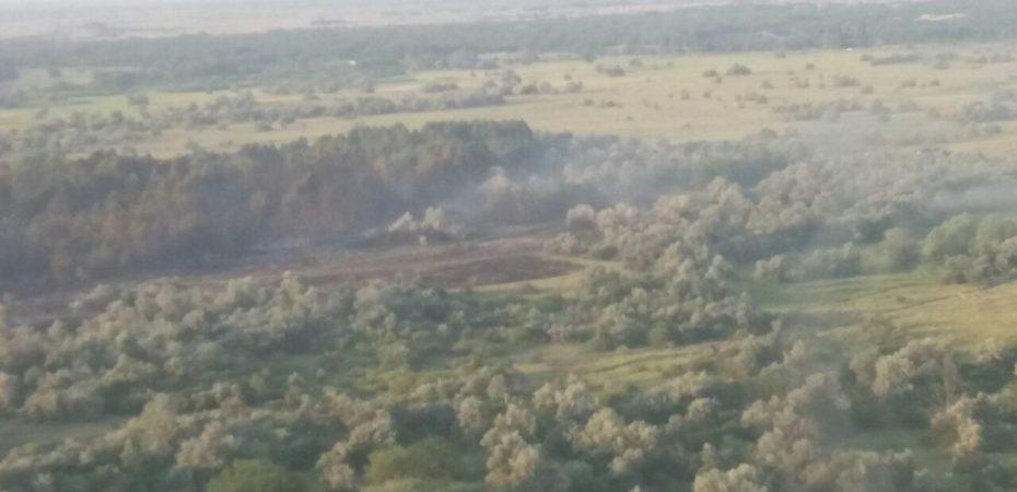 Херсонська область: ліквідація лісової пожежі на території Збур'ївського лісництва