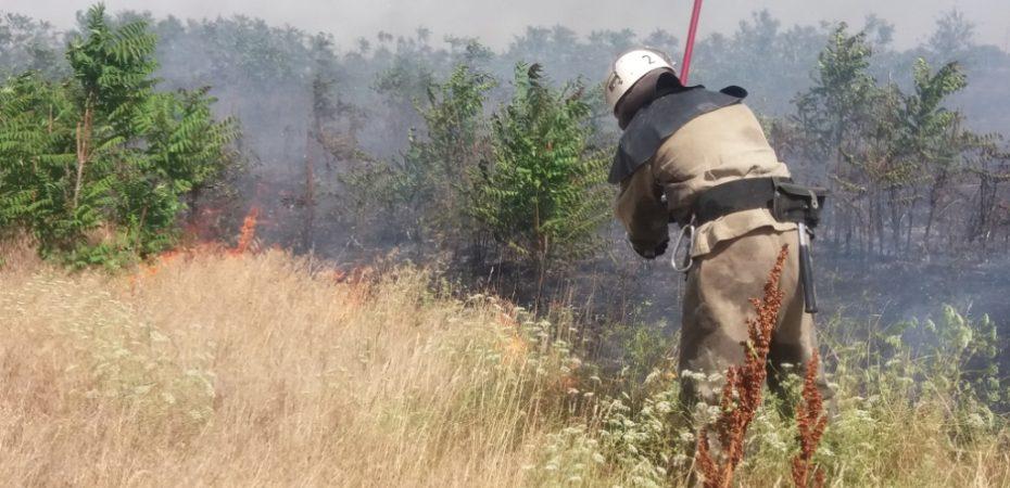 Вчора в області 13 разів горіла суха трава