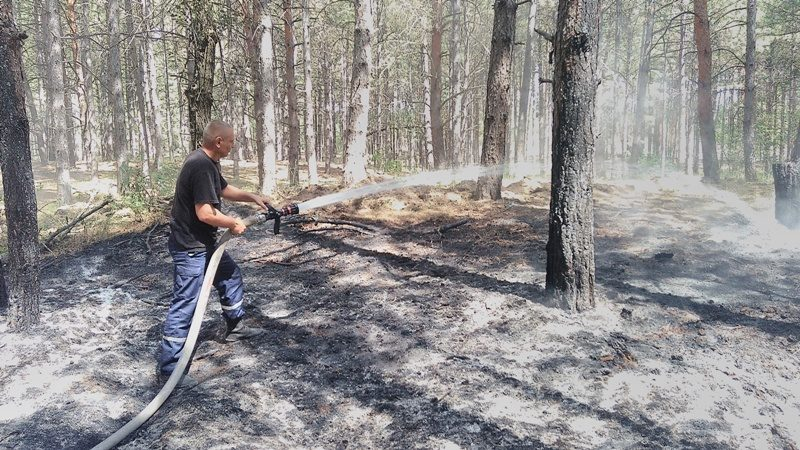 Оперативна інформація щодо пожежі на території Каховського лісництва у Херсонській області