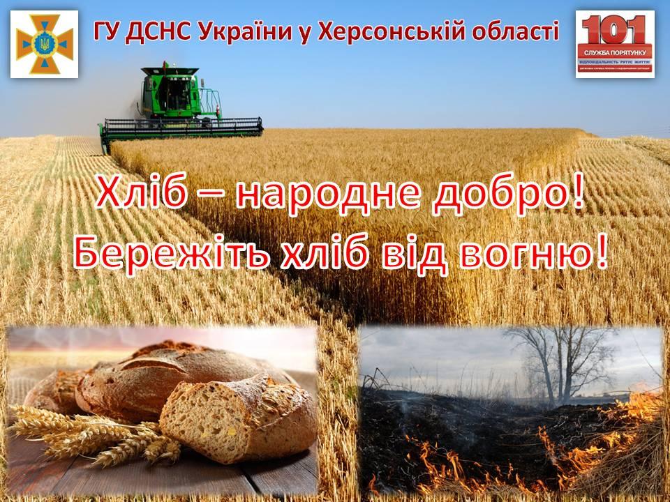 У Білозерському районі горіло пшеничне поле