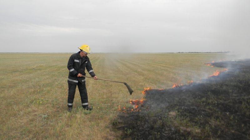За минулу добу в області вогнеборці 20 разів гасили пожежі сухостою, стерні і лісу