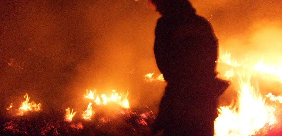 У смт Нова Воронцовка ліквідовано пожежу сухостою на площі 0,4 га