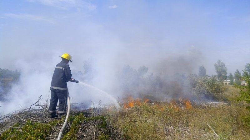 За минулу добу вогнеборці 4 рази гасили пожежі в екосистемах