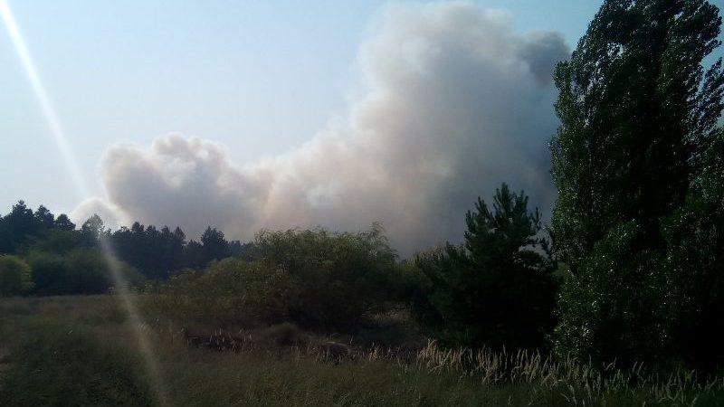 В Олешківському районі триває ліквідація двох низових лісових пожеж