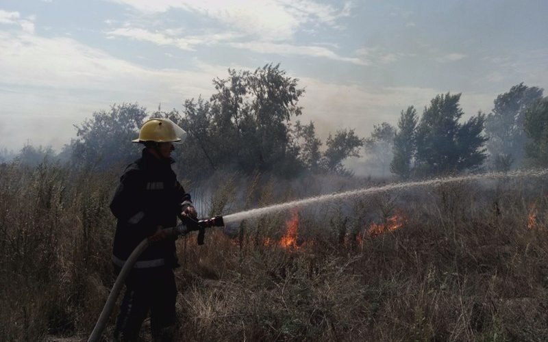За добу ліквідовано понад 20 пожеж на відкритих територіях