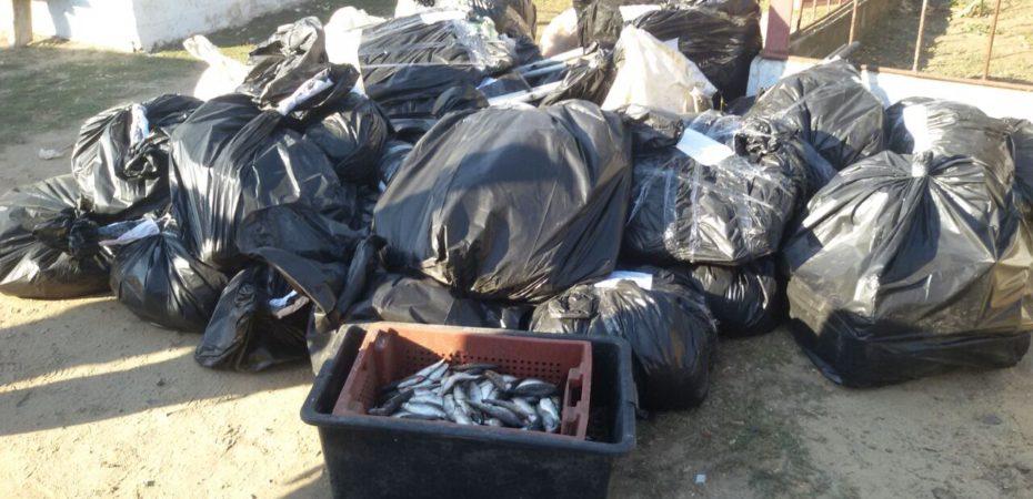 На Миколаївщині прикордонники виявили інспекторів рибоохоронного патруля, які займались браконьєрською діяльністю