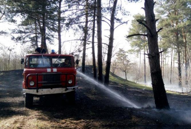 Протягом минулої доби на Херсонщині сталося 2 лісові пожежі