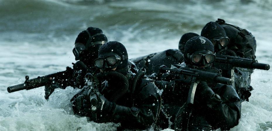 На берегу лимана Чёрного моря обосновались «морские котики»