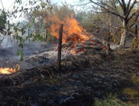 На Херсонщині внаслідок пожежі згоріли дрова та паркан